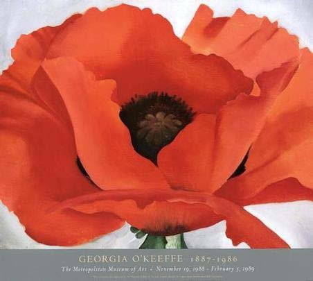 100-hand-painted-oil-paintings-reproduction-on-canvas-Georgia-O-Keeffe-Red-Poppy-Free-shipping-nice